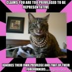 (Carceral Feminist Cat meme by Melissa Gira Grant)